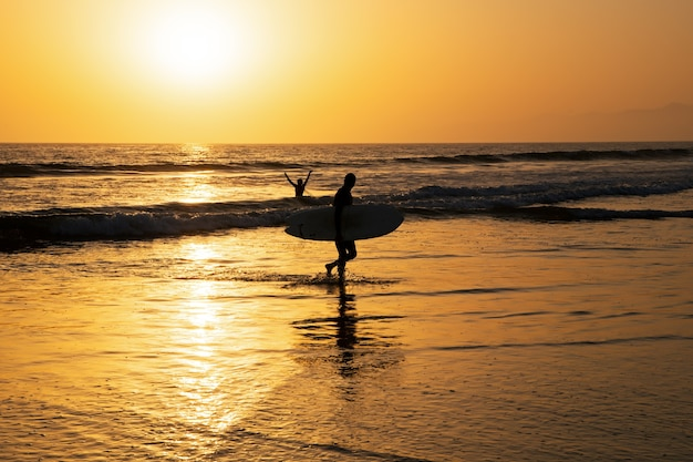 Surfing at sunset. man with surfboard. outdoor people active lifestyle.