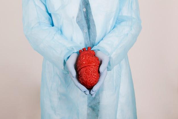 Le mani del chirurgo con un cuore