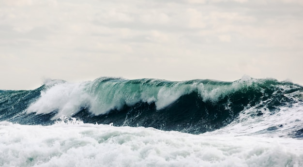 Surging waves in the deep sea