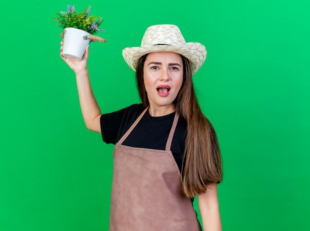 Ragazza bella giardiniere sorpresa in cappello da giardinaggio d'uso uniforme che alza fiore in vaso di fiori isolato su priorità bassa verde