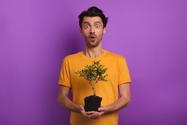 驚いた少年は、植える準備ができている小さな木を持っています。植林の概念。