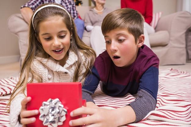 驚いた兄弟姉妹、贈り物を虚偽