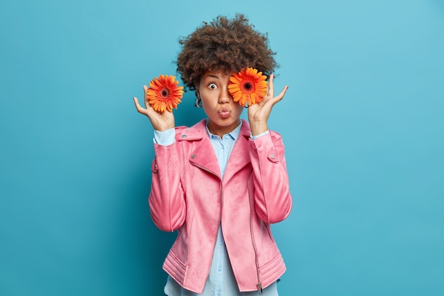 놀란 곱슬 머리 젊은 여자는 꽃이 눈 앞에서 오렌지 거베라 꽃을 보유하고 분홍색 재킷을 입고 입술이 파란색 벽에 고립 된 접힌 상태를 유지하면서 완벽합니다.