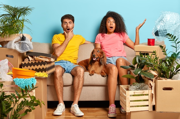 Surprised diverse family couple stare, sit on soft sofa with pet between, shocked with high price on renting flat, change place of living, many boxes with belongings. moving to new place