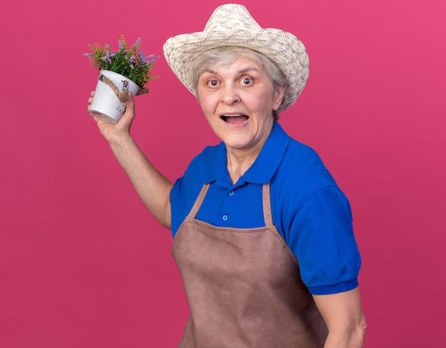 Giardiniere femminile anziano sorpreso che indossa il cappello da giardinaggio che tiene vaso di fiori flower