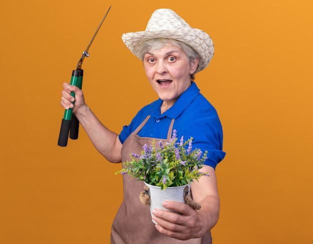 Giardiniere femminile anziano sorpreso che indossa cappello da giardinaggio che tiene forbici da giardinaggio e vaso di fiori isolato sulla parete arancione con spazio di copia