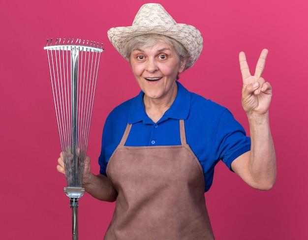 잎 갈퀴를 들고 있는 원예용 모자를 쓰고 복사 공간이 있는 분홍색 벽에 격리된 몸짓 승리 기호를 들고 놀란 노인 여성 정원사