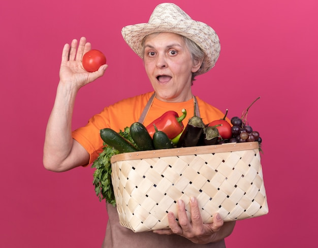 野菜のバスケットとトマトを保持しているガーデニング帽子をかぶって驚いた年配の女性の庭師