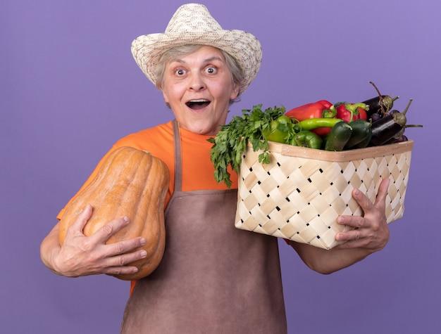 Giardiniere femminile anziano sorpreso che indossa cappello da giardinaggio che tiene cesto di verdure e zucca isolati su parete viola con spazio di copia