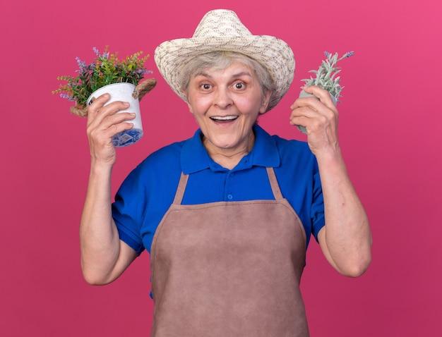 Il giardiniere femminile anziano sorpreso che porta il cappello di giardinaggio tiene i vasi da fiori