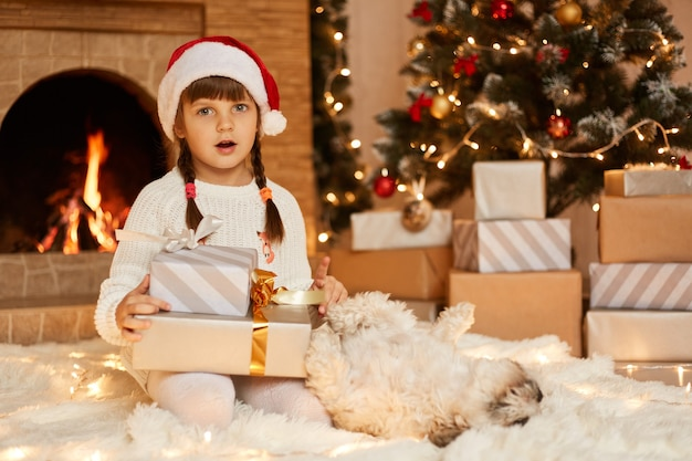 Surprised little girl wearing white sweater and santa claus hat, posing with dog in festive room with fireplace and xmas tree, holding present box in hands.