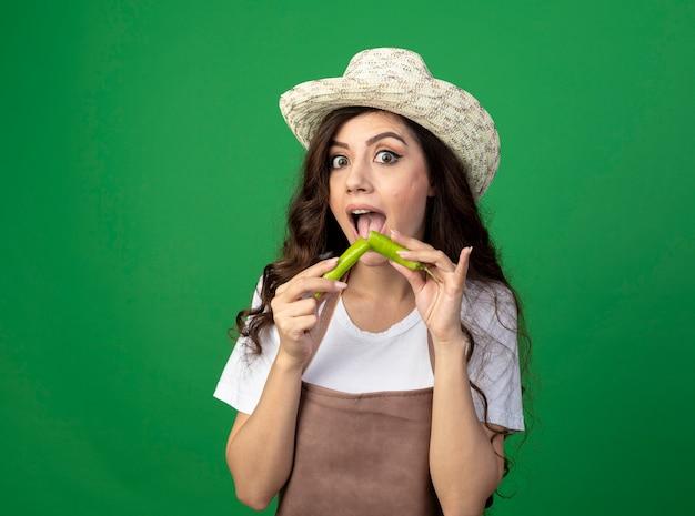 Удивленная молодая женщина-садовник в униформе в садовой шляпе держит сломанный острый перец на зеленой стене с копией пространства