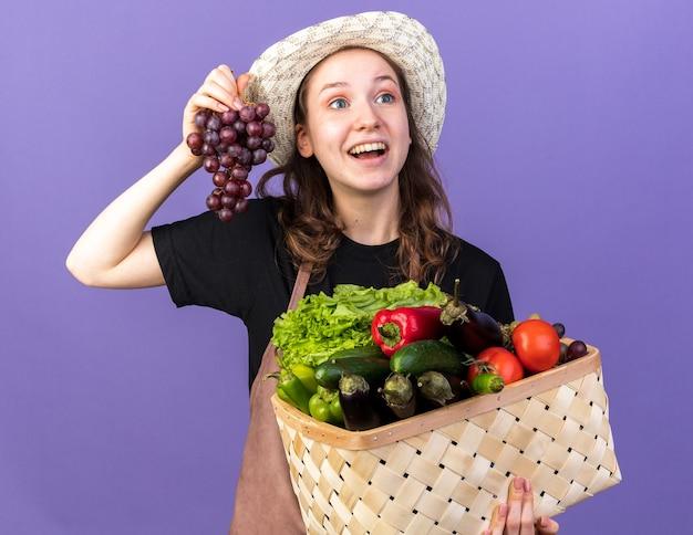 Удивленная молодая женщина-садовник в садовой шляпе держит овощную корзину с виноградом, изолированную на синей стене