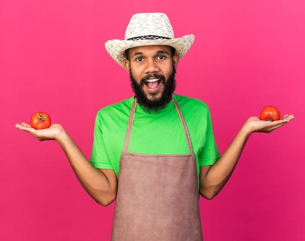 トマトを広げて手を握ってガーデニングの帽子をかぶって驚いた若い庭師アフリカ系アメリカ人の男