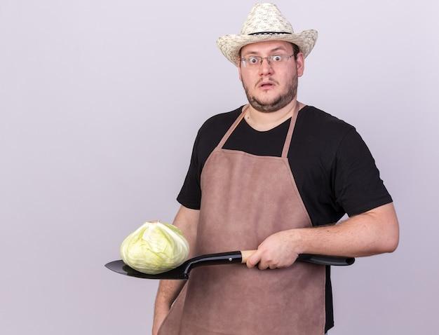 コピースペースと白い壁に分離されたスペードにキャベツを保持しているガーデニング帽子をかぶって驚いた若い男性の庭師