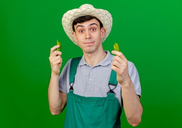 ガーデニング帽子をかぶって驚いた若い男性の庭師は、コピースペースで緑の背景に分離されたカメラを見て壊れた唐辛子を保持します。