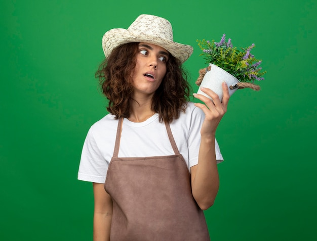 Giardiniere sorpreso della giovane donna in uniforme che indossa il cappello di giardinaggio che tiene e che esamina il fiore in vaso di fiori isolato sul verde