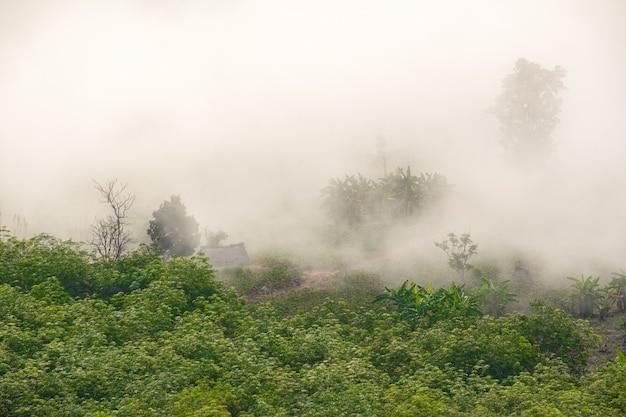 Сюрреалистический пейзаж утреннего туманного .. утренние облака на восходе солнца. пейзаж тумана и гор северного таиланда.