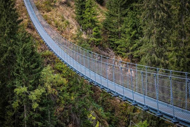 Suspended bridge on alps