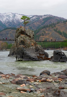 Подвесной мост с туристами стоит на высокой скале посреди реки алтай.