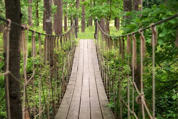 숲에서 서스펜션 나무 다리입니다. 숲 속의 두 언덕 사이에 매달린 밧줄 다리.