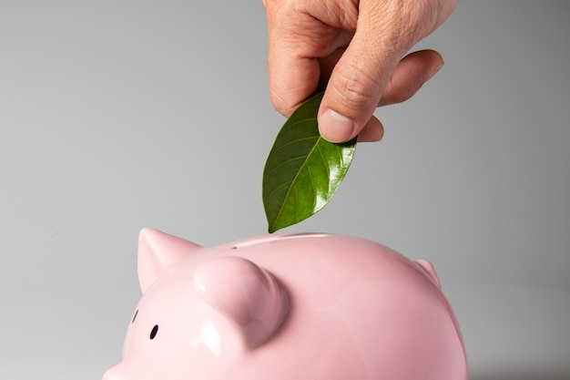 지속 가능성 및 녹색 비즈니스 개념