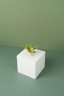 空白の幾何学的形状と成長する植物による持続可能性のコンセプト