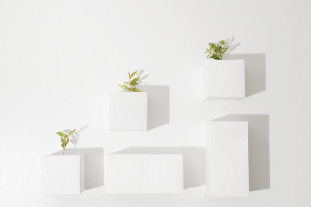 幾何学的な形と成長する植物による持続可能性のコンセプト
