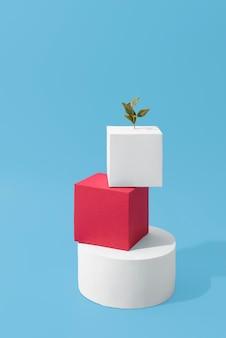 Concetto di sostenibilità con forme geometriche e piante in crescita