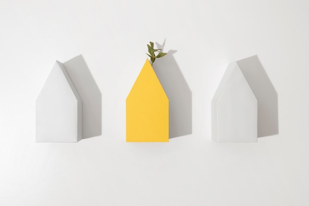 Sustainability concept with geometric forms and growing plant