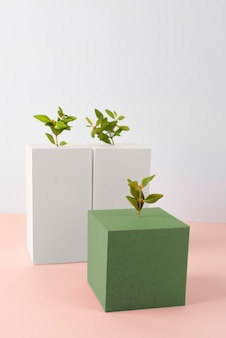 Sustainability concept with plants growing from geometric forms