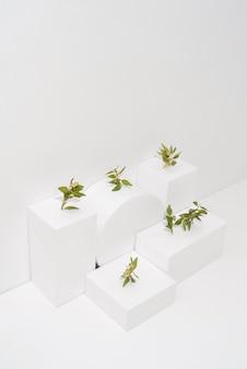 기하학적 형태에서 자라는 식물의 지속 가능성 개념
