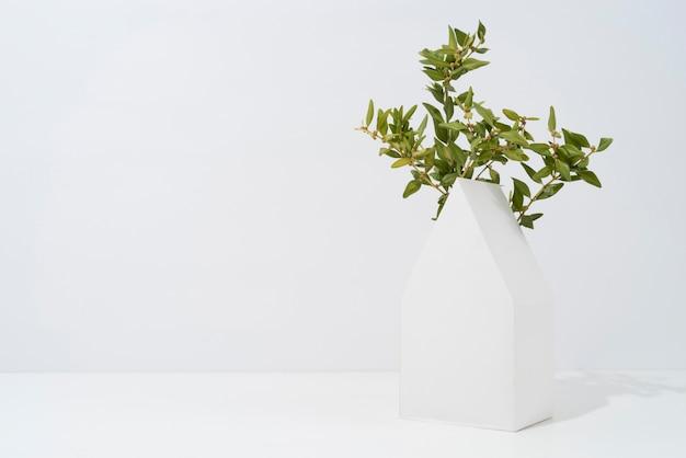 幾何学的な形から成長する植物による持続可能性の概念