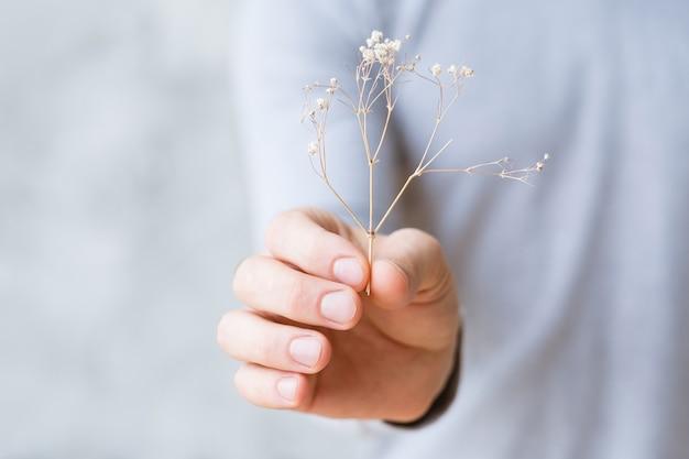 지속 가능한 개발. 자연 보호 개념. 망 손에 마른 식물.