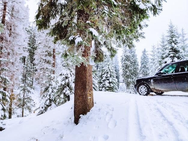 눈 덮인 숲 복사 공간에서 suv 자동차