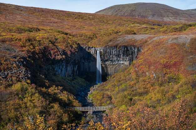 Svartifoss waterfall in the autumn, iceland