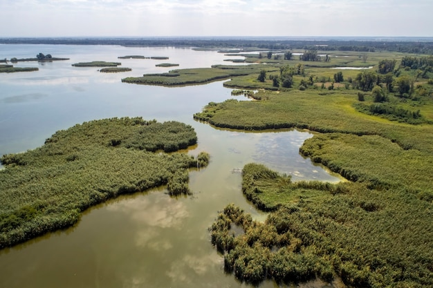Swampy lake, aerial photography, on a summer day, background image