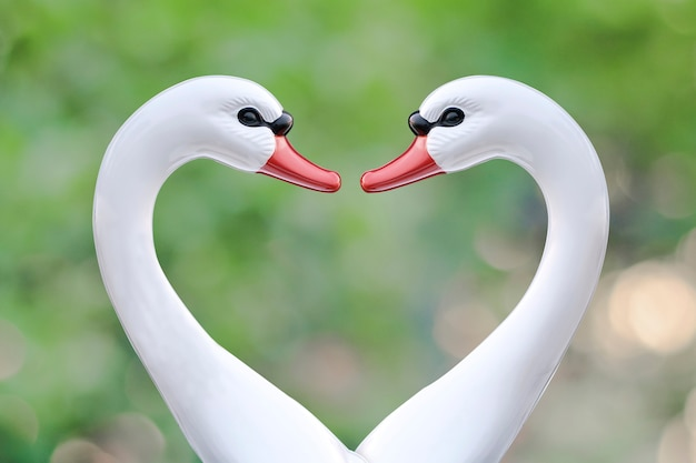 Swan boat in love sign on nature