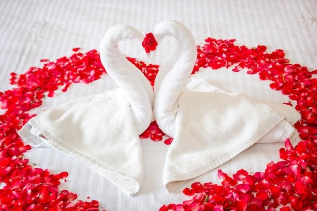 Swan couple put on honeymoon bed