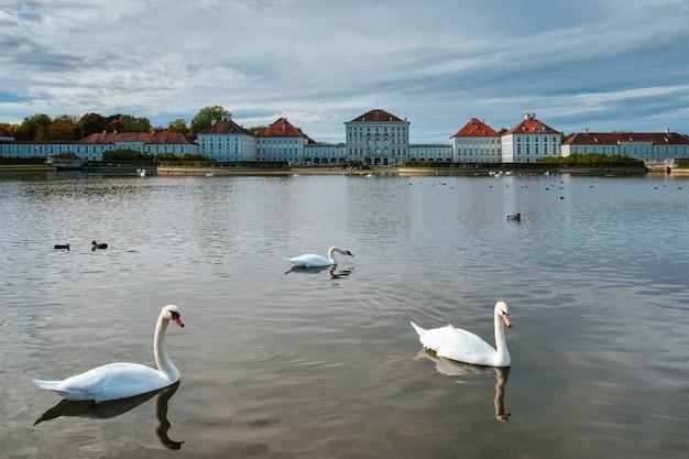ニンフェンブルク宮殿ミュンヘンバイエルンドイツの近くの池の白鳥