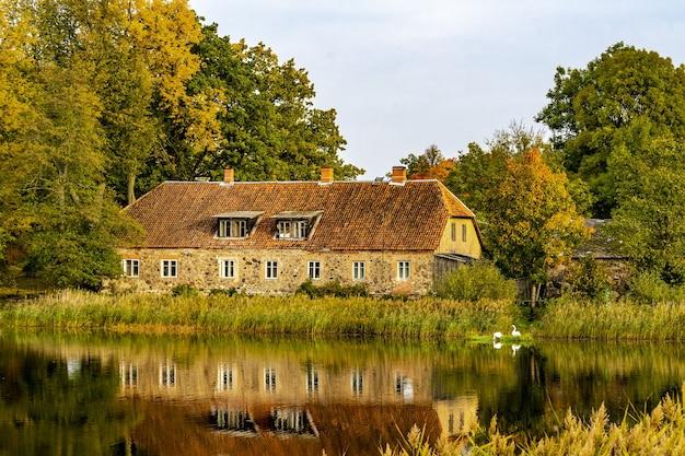 湖の建物のそばの白鳥
