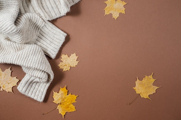 Sweater, autumn maple leaves on brown background