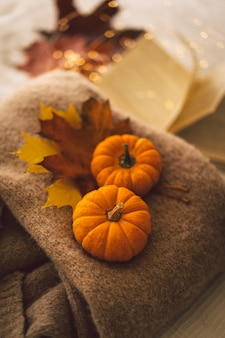 Sweaters and two pumkins with autumn leaves still life details in home interior cozy autumn