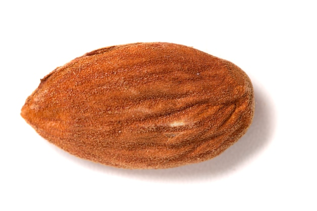 Sweet almond drupe