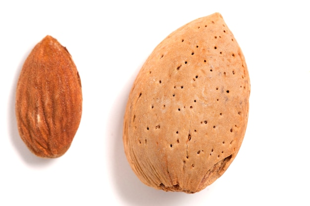 Sweet almond and seed