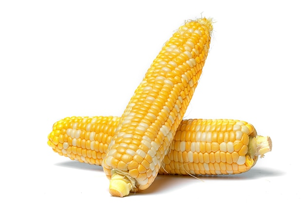 Сладкая и сочная кукуруза в початках на белом фоне