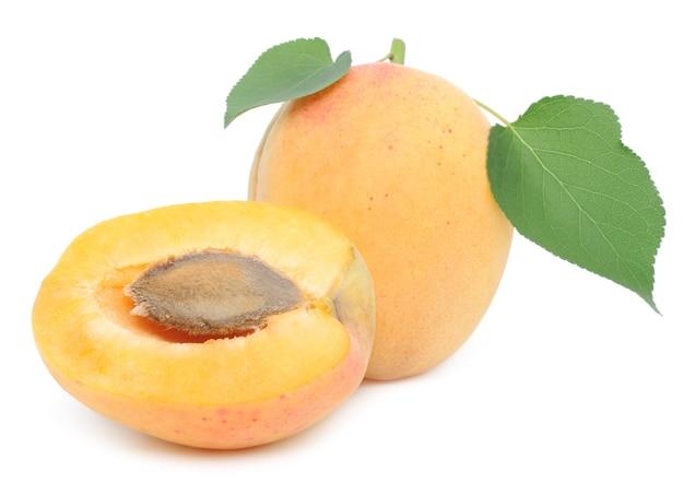 白に葉のある甘いアプリコットフルーツ