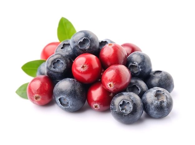 Сладкие ягоды клюквы и черники изолированы.