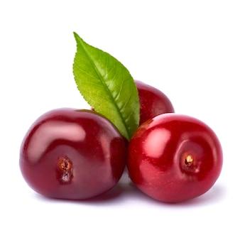 白で分離された甘い桜の果実
