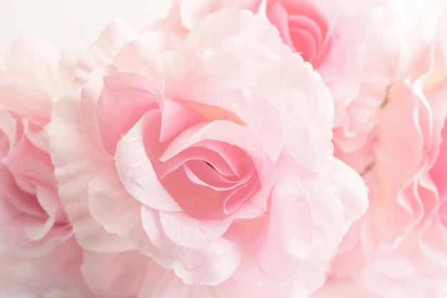Sweet color roses in soft style for background Premium Photo